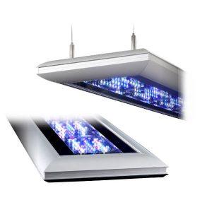 Giesemann LED & T5